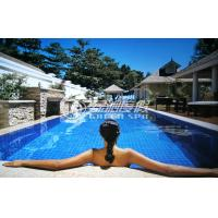 Large swimming pools design plans swimming pool for Swimming pool plans for sale