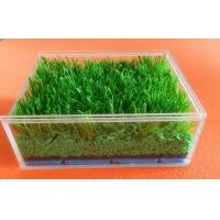 China Customized Synthetic Grass Rubber Infill For Artificial Turf , SBR Rubber Granules wholesale