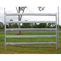 Buy cheap Simple Installation Galvanized Horse Fence Panels Pipe Panels For Horses product