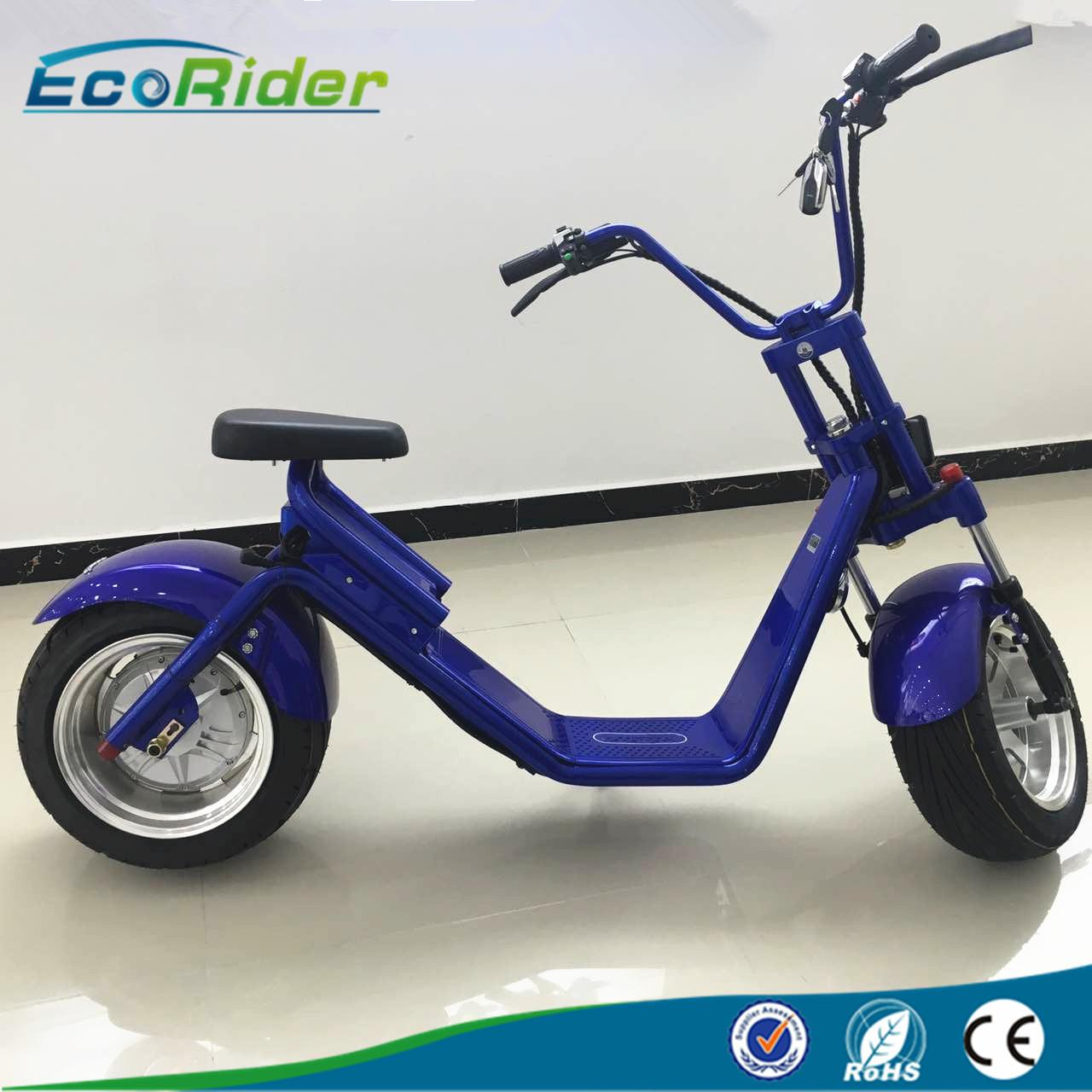 China EcoRider 2 wheel electric scooter with LED light,double seat electric bike with disc brake on sale