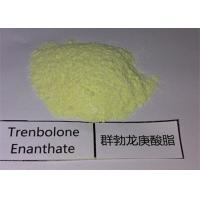 Buy cheap Anabolic Yellow Steroid Powder 99% Trenbolone Enanthate for Fat Loss from wholesalers