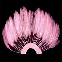 Buy cheap Feather Patch Half Pin Wheel Feather product