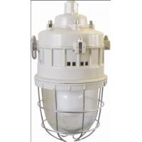 Series of anti-explosion lamps Flame-proof lamp Series BGD52(Maintenance-free energy-saving EDL electrodeless lamp)ⅡC、DIPA20