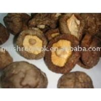 Buy cheap Smooth mushroom from wholesalers