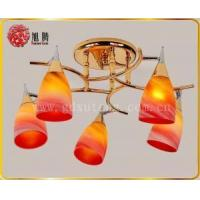 cup shape glass light