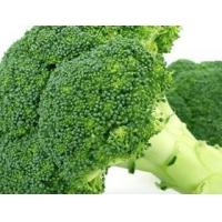 Buy cheap Broccoli extract product