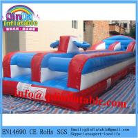cheap exciting inflatable bungee run for sale