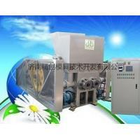 China Newest double-head biomass briquette press on sale