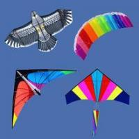 China outdoor toy flying kite wholesale