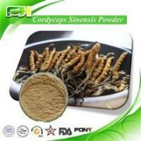 Buy cheap Best Price Manufacture Natural Cordyceps Sinensis Extract product