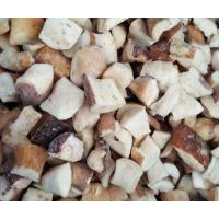 Buy cheap Mushroom NAME: Frozen Boletus Edulis cubes product