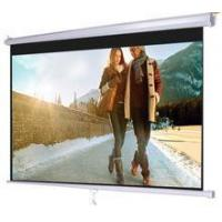 Professional home theatre high gain projector screen