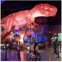 Buy cheap Indoor dinosaur display product