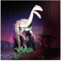 Buy cheap Dinosaur Museum Exhibition product