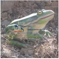 Buy cheap Animatronic Animal Frog from wholesalers