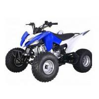 China Recreation Vehicle All-Terrain Vehicle wholesale