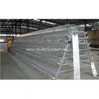 Buy cheap Cage System Automatic chicken layer cage from wholesalers