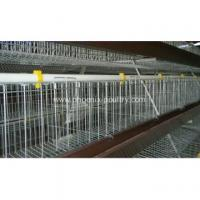 Buy cheap Cage System H type automatic broiler cage system from wholesalers