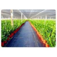 Buy cheap Factory Price weed control mat, Ground cover, weed barrier, landscape fabric, weed control fabric product