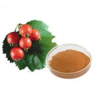 Buy cheap Rose hips Extract product