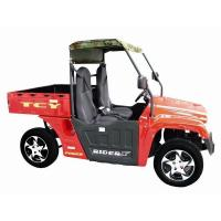 China UTV-Electric wholesale