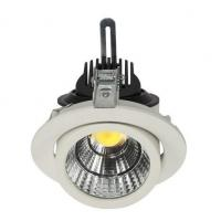 COB LED Adjustable Downlight