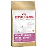 China Royal Canin Adult Dog West Highland Terrier 21 on sale