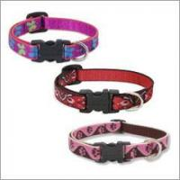 """Buy cheap Lupine Dog Collar - 1/2"""" product"""