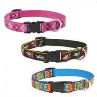 """Buy cheap Lupine Dog Collar - 3/4"""" product"""