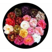 Buy cheap Peony flower heads from wholesalers
