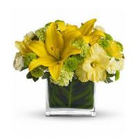China Mothers Day Oh Happy Day by Teleflora on sale