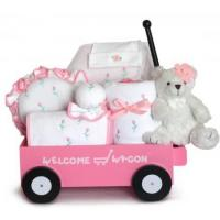China Personalized Baby Gifts Pretty in Pink Deluxe Welcome Wagon Baby Girl Gift on sale