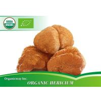 Buy cheap Organic Hericium from wholesalers