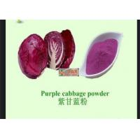 Buy cheap Red Cabbage Natural Vegetable Powder With Anti Radiation / Inflammation product