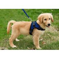 Buy cheap Copatchy No Pull Reflective Adjustable Dog Harness With Handle medium blue product