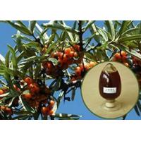 Buy cheap Seabuckthorn from wholesalers