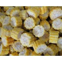Buy cheap Frozen Sweet Corn Cob from wholesalers