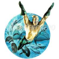 Buy cheap Aquaman Iron ons (Wall Stickers) Model: SuperheroIronons-0335 from wholesalers