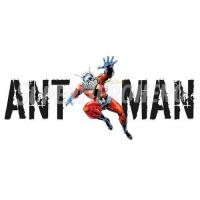 Buy cheap Ant-Man Iron ons (Wall Stickers) Custom Ant Man Iron on Transfers (Wall & Car Stickers) No.6481 from wholesalers