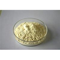 Natural extractive Panax Notoginseng Extract