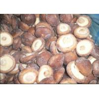 Buy cheap IQF Mushrooms IQF Shiitake whole product