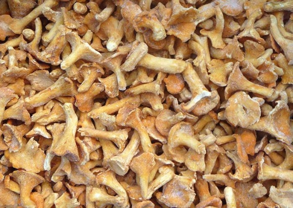 Quality IQF Mushrooms IQF Chanterelles for sale