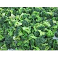 Buy cheap Frozen Broccoli Florets RC-FV-009 product