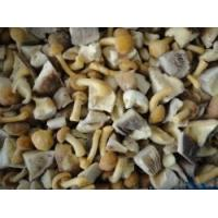 Buy cheap Frozen Blended mushroom RC-FV-029 product