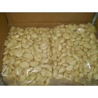 Buy cheap FRESH GARLIC from wholesalers