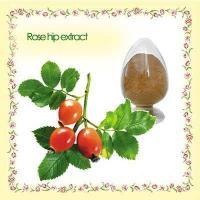 China fructus rosae extract Rose Hip Extract use for protect against various urinary tract disorders on sale