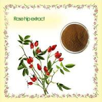 Buy cheap Rose hip extract 100% Natural Rose hip extract,10%,5% Vitamin C, Polyphenols 5-20% product