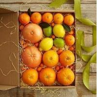 Buy cheap China Christmas fruit basket Simply Fresh Winter Citrus NO.2 delivery basket to china product