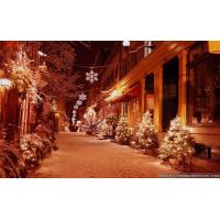 Buy cheap Pictures Of Outdoor Christmas Decorations product