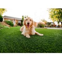 China ARTIFICIAL GRASS FOR PET wholesale